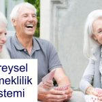 bireysel emeklilik nedir